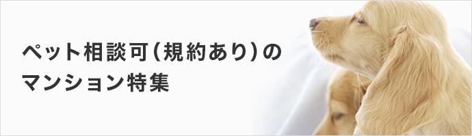 大阪府のペット相談可(規約による制限あり)の物件