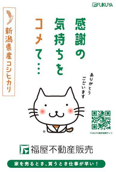 1/7~3/31 『春のフレッシュフェア』 開催中!